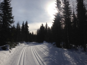 Pre race preparation of the Birkebeiner race tracks on Friday